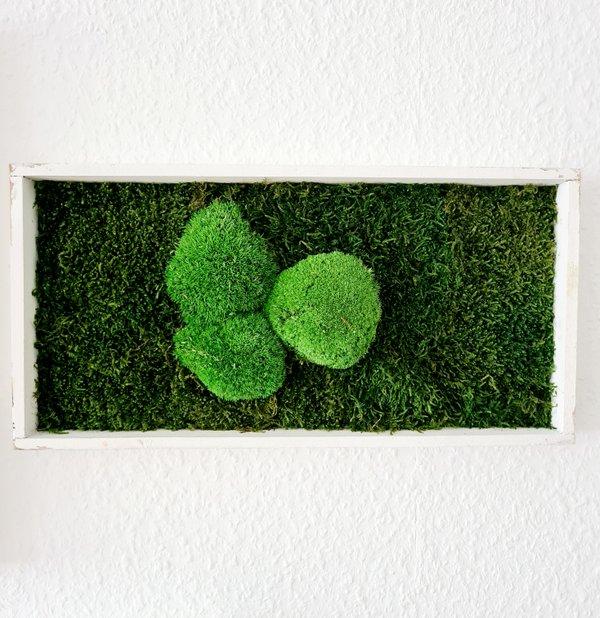 Wald- und Kugelmoosbild 40x20x4 cm, shabby chic, Aufhängung ohne bohren