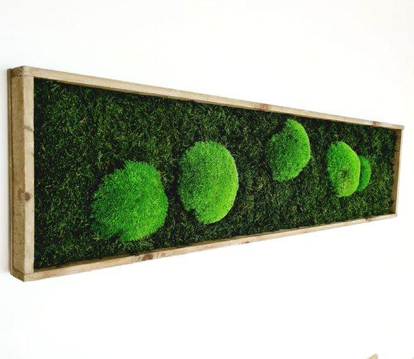 Moosbild Wald- und Kugelmoos gemischt, 80x20x4 cm, natur, Aufhängung ohne bohren
