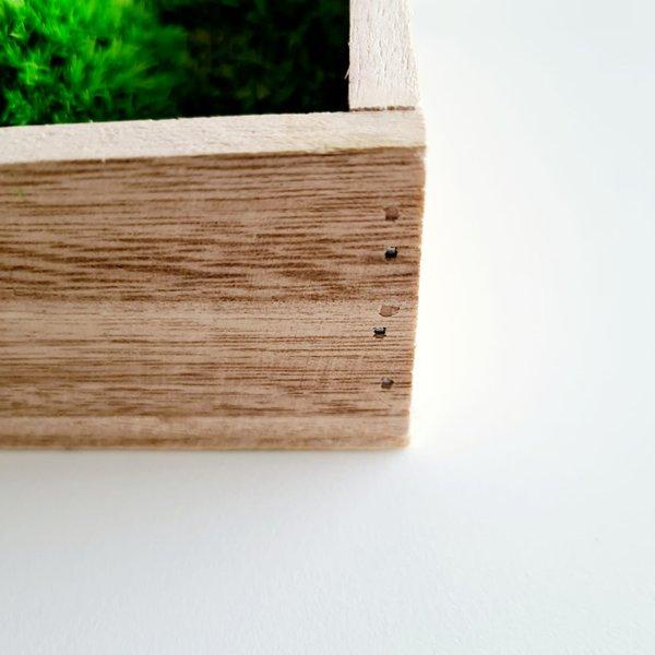 Wald- und Kugelmoosbild: Set 3 Stk., 35x15x5 cm, Holzrahmen geflammt, Aufhängung ohne bohren