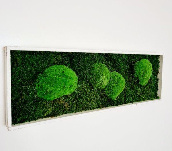 Wald- und Kugelmoos gemischt, 60x20x4 cm, white shabby chic, Aufhängung ohne bohren